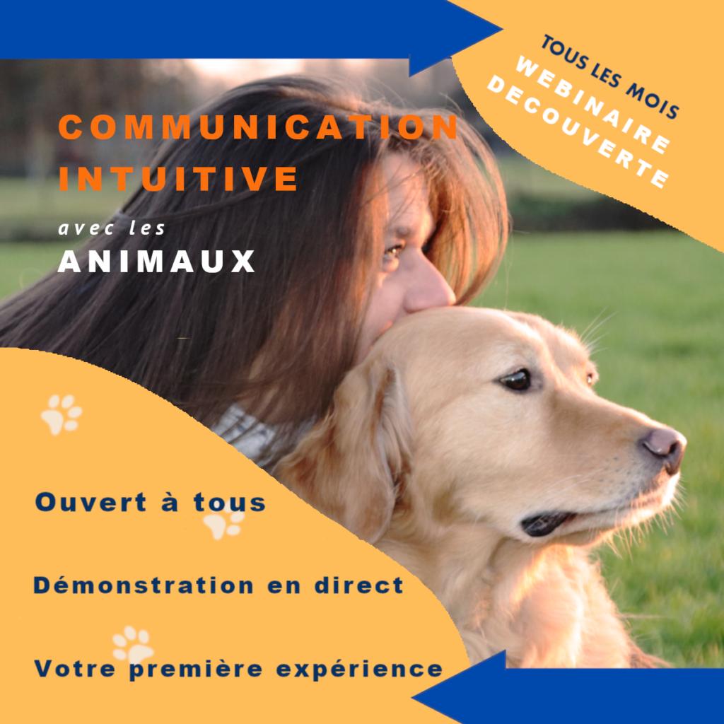 webinaire découverte de la communication intuitive avec les animaux